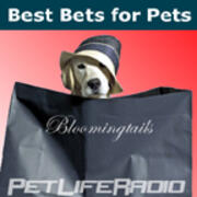 Best Bets for Pets